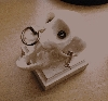 Steampunk Monkey Skull- Traxidermy Obscura - Resin